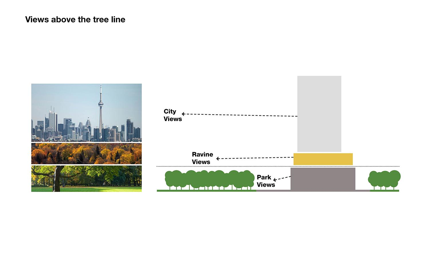 diagram of the views from above the tree line