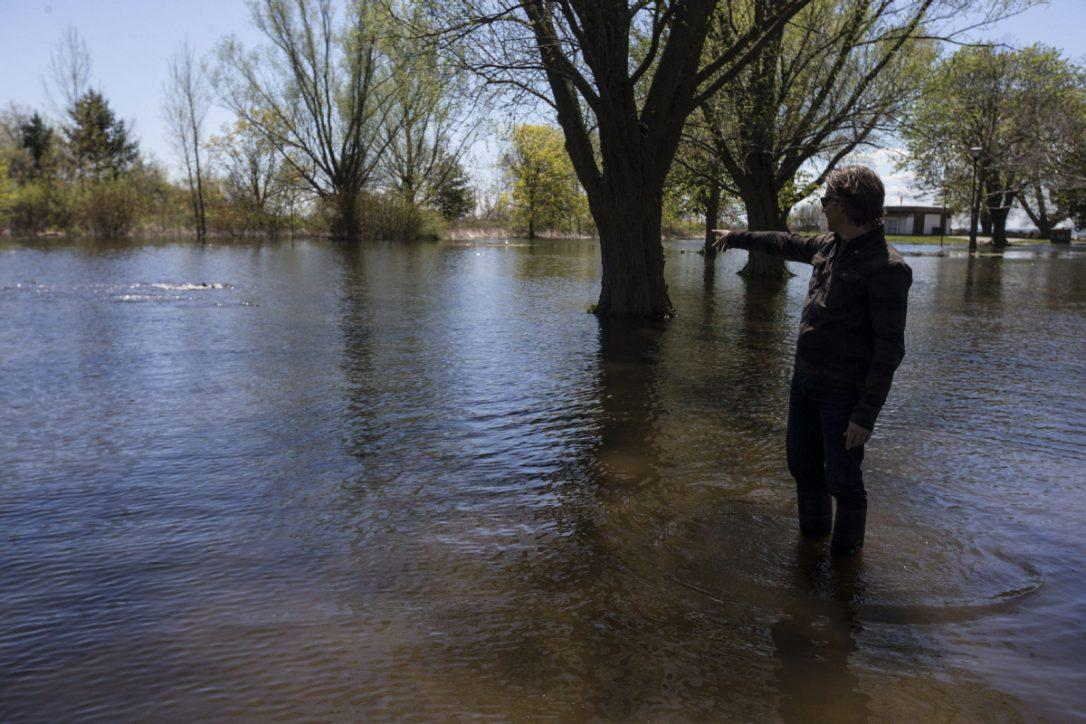 A man stands shin deep in water inland of the Toronto Islands, pointing to carp that have swam inland during the flood
