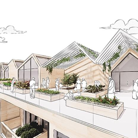 sketch of a rooftop amenity with community gardens