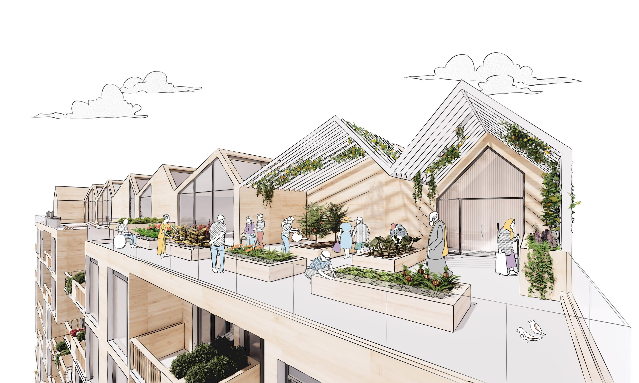 rendering of a rooftop amenity with terraces, garden plots, gabled pitched trellises with greenery