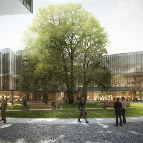 courtyard wit a large tree in the middle, surrounded by a round, glazed office building