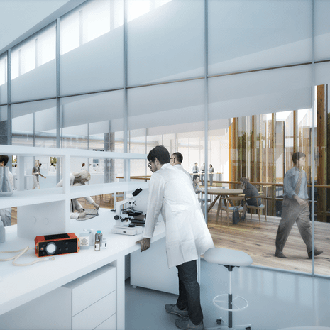 rendering showing scientists doing experiments in a white laboratory, with glazed wall showing hallway with wooden floors and floor to ceiling windows to the outdoors